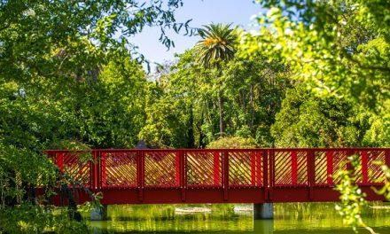 À vélo ou à pied, une lagune, un pont tournant…