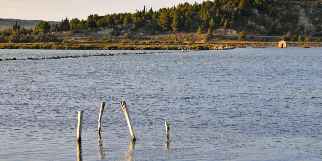 Un étang plus salé que la mer morte
