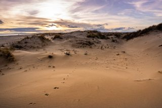 Balade contée sur le sable 📜  Découvrez le site naturel protégé des Orpellières, à travers une promenade organisée tous les lundis et jeudis, à la fraîche. Acquis en 1980 par le Conservatoire du Littoral, il se déploie sur 150 hectares et a fait l'objet d'un plan de réhabilitation car le lieu, abandonné, se salinisait peu à peu. Le passionné qui vous accompagne vous détaille également la flore et la faune des Orpellières, la naissance et l'évolution de la Méditerranée.  📍⠀Béziers - @beziers_mediterranee_tourisme 🧐⠀Les lundis et jeudis à 9h30. RDV à l'ancien domaine des Orpellières (fléchage depuis l'entrée de Sérignan-plage). 8€ et 6€, Rens. et résa. obligatoire : www.beziers-in-mediterranee.com / 04 99 41 36 36.  📷⠀© Maixent Collado  #journaldesplages #media #hebdogratuit #littoral #suddelafrance #southoffrance #suddefrance #occitanie #mer #plage #hérault #gard #aude #pyrénéesorientales #vacances #loisir #été #summer #découverte #tourisme #balades #occitanietourisme #tourismeoccitanie #trip #balade