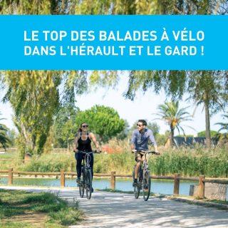 PRÊTS À ENFOURCHER VOTRE VÉLO ? 🚴  Découvrez notre sélection de balades à vélo dans l'Hérault et le Gard accessibles à tous ! 😎Pour une journée ou une demi journée, pédalez dans un environnement bucolique aux panoramas incroyables 😍  🥰  Retrouvez toutes nos idées de sorties sur www.journaldesplages.fr (lien dans la bio)  👀  Pour plus d'informations :  - À la conquête du Volcan : @capdagdemediterranee  - Le circuit des balcons de Corneilhan : @beziers_mediterranee_tourisme  - La plage à Bicyclette : @legrauduroiportcamargue  - Le lido à vélo : @sete_archipeldethau  - Direction la mer, au fil du Lez : @palavastourisme   📸  Crédits photos (par ordre d'apparition) :  © Sébastien Mias © H. Comte © Laurent Piccolillo © Station Grau-du-Roi © Corinne Sospedra © Montpellier Tourisme  #journaldesplages #media #hebdogratuit #littoral #suddelafrance #southoffrance #suddefrance #occitanie #mer #plage #hérault #gard #aude #pyrénéesorientales #vacances #loisir #été #summer #découverte #tourisme #balades #occitanietourisme #tourismeoccitanie #trip #balade #vélo #bike #cyclotourisme #cycling #cyclinglife