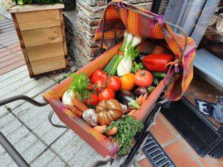 L'Escalivada, recette de toujours 😋🍅🍆  Au moment de leur pleine maturité, les aubergines, les tomates, les oignons, l'ail et les poivrons rouges constituent la base d'un plat simple et délicieux. L'Escalivada peut se consommer en apéritif sur des croûtons, ou en accompagnement de tout ce qui fait la richesse du terroir catalan, poisson, viande, charcuteries... 👍  💻⠀La recette : www.journaldesplages.fr (lien dans la bio) 📷⠀© Arlette  #journaldesplages #media #hebdogratuit #littoral #suddelafrance #southoffrance #suddefrance #occitanie #mer #plage #hérault #gard #aude #pyrénéesorientales #vacances #loisir #été #summer #découverte #tourisme #balades #occitanietourisme #tourismeoccitanie #trip #faitmaison #cuisinemaison #miam